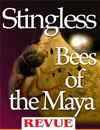 40 Stingless bees of the Maya REVUE article insects Nicholas Hellmuth April 2012 100